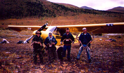 alaskan dall sheep hunt
